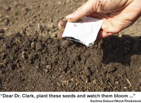 Picture of planting seeds
