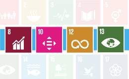SDG Article Graphics_Feature Image